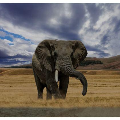 Towels - Savannah Wildlife