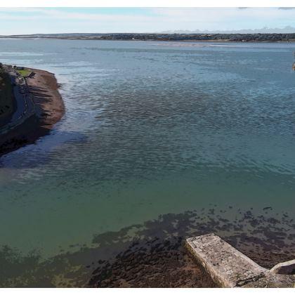 Men's Swimming Shorts - Welsh Ocean