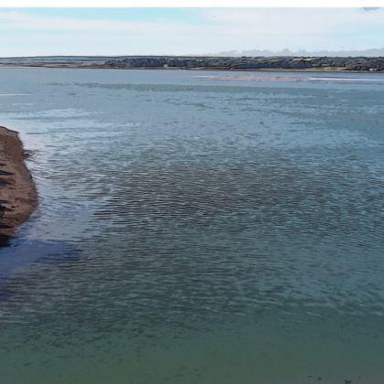Strapless Swimsuit - Welsh Ocean