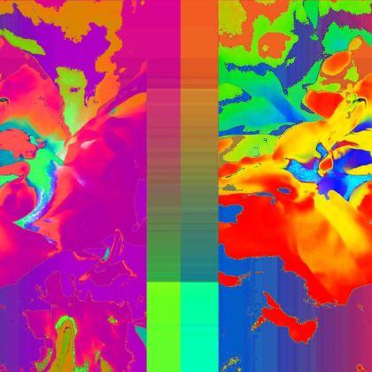 Brilliance Handbag