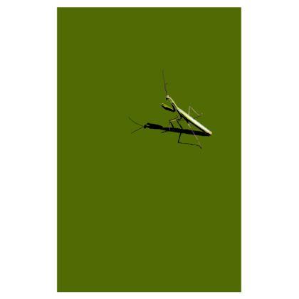 Men's Swimming Shorts - Mantis
