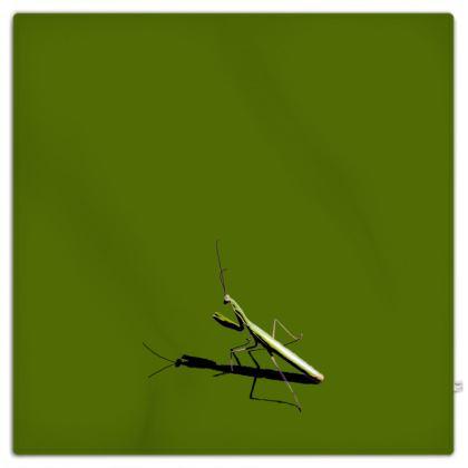 Picnic Blanket - Mantis