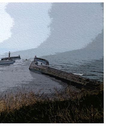 Men's Swimming Shorts - Whitby Sea