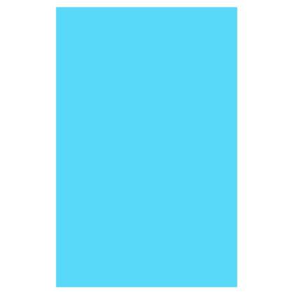 Men's Swimming Shorts - Birdie
