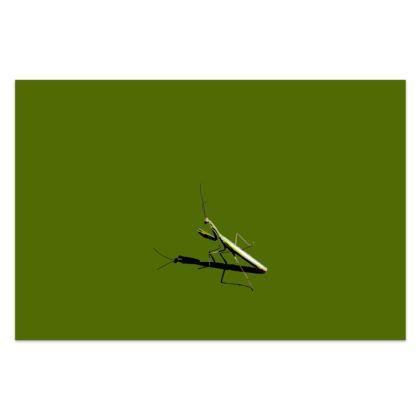 Sarong - Mantis