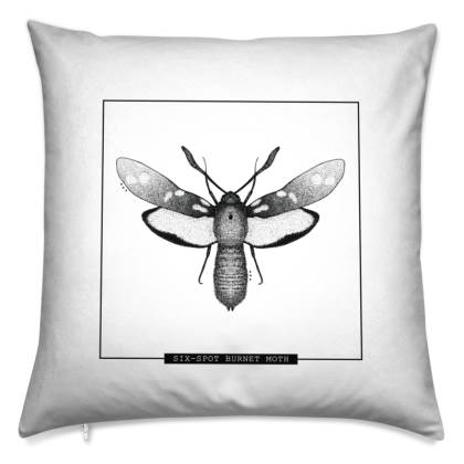003 MOTH ANTIDERMY CUSHION
