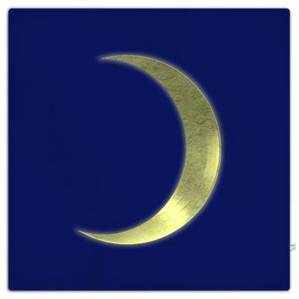 Picnic Blanket - Vinyl Moon