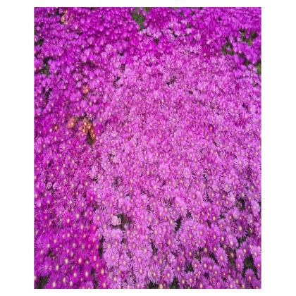 Trays - Ice Plant
