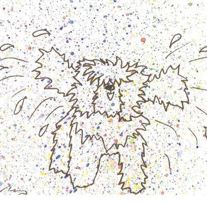 Tibetan Terrier Coasters (2)