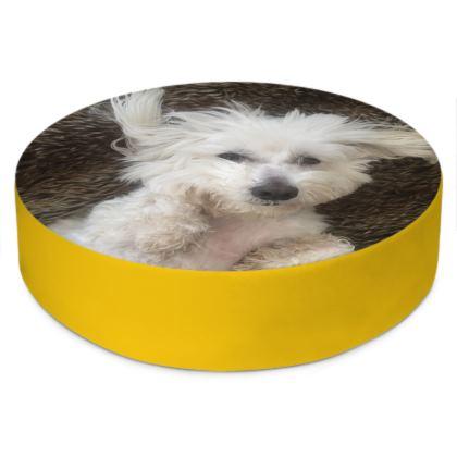 Pouf chien