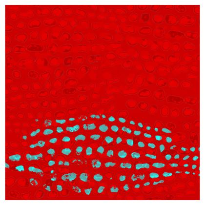 Textural Collection in red and turquoise Deckchair