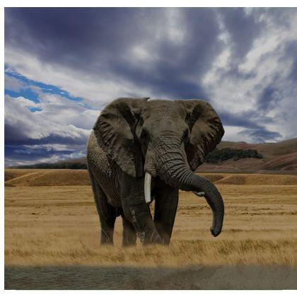 Kimono Jacket - Savannah Wildlife
