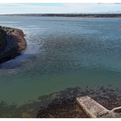 Socks - Welsh Ocean