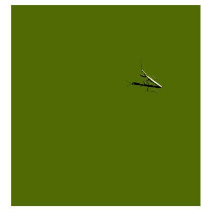 Kimono Jacket - Mantis
