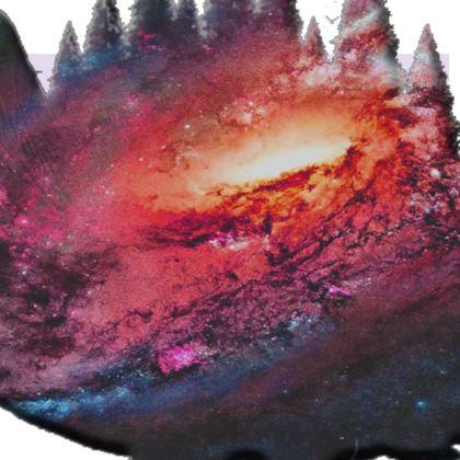 Kimono - Tortoise Earth Full