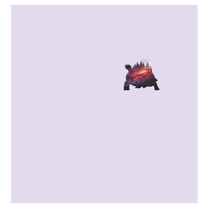 Kimono Jacket - Tortoise Earth