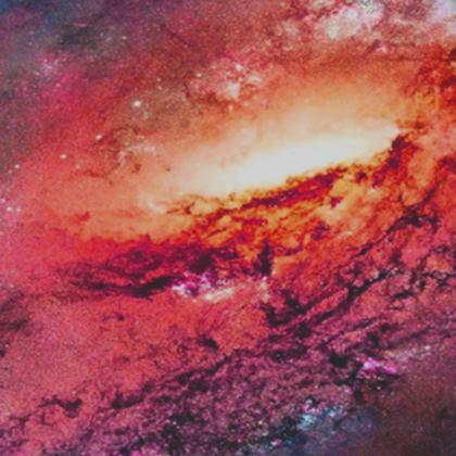 Kimono Jacket - Tortoise Earth Full