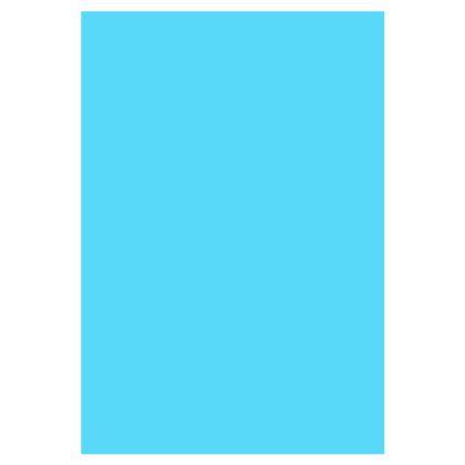 Socks - Birdie
