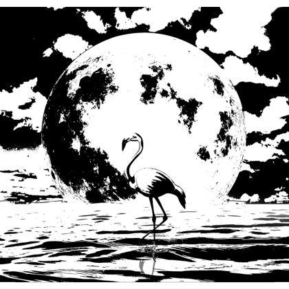 Kimono Jacket - Flamingo