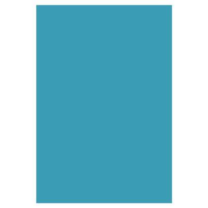 Socks - Magical Mermaid
