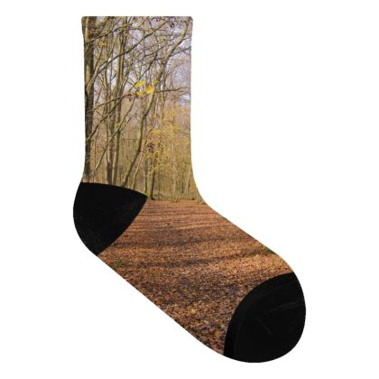 Socks - Open Clearing in Clapham Woods