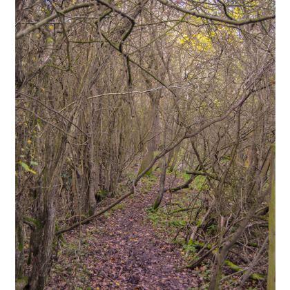 Kimono Jacket - Trail in the Woods