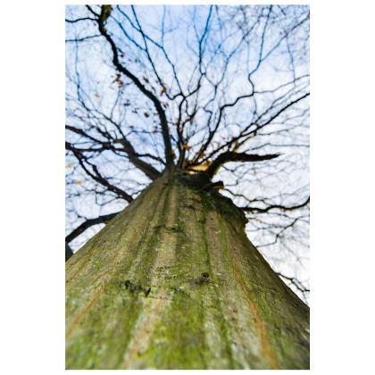 Socks - Vertical Tree