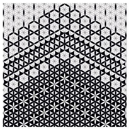 Mens Swimming Shorts Flower Of Life -1