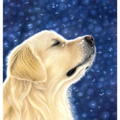 Golden Retriever Coasters - Magic Moment