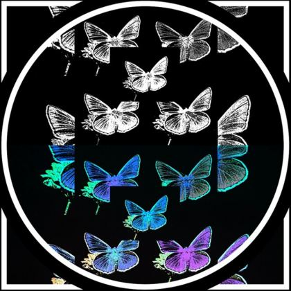 portafoglio linea Farfalle