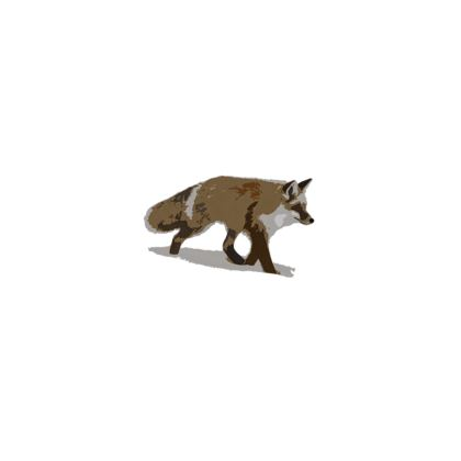 Espadrilles - Lonely Fox In The Snow