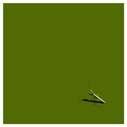 Cushions - Mantis