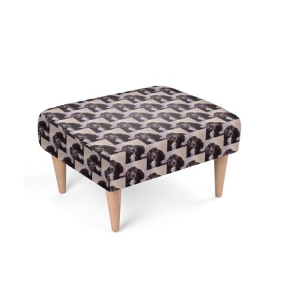 Monty the Spaniel Luxury Fine Art Footstool by Somerset (UK) Artist and Designer Amanda Boorman