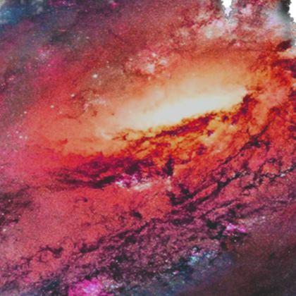 Serving Platter - Tortoise Earth