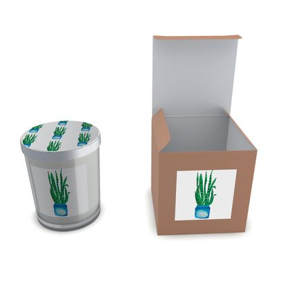 Snake Plant, Quarantine Watercolor Candle