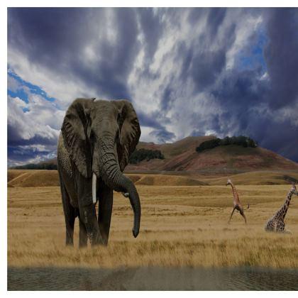 Large Tray (43cmx33cm) - Savannah Wildlife