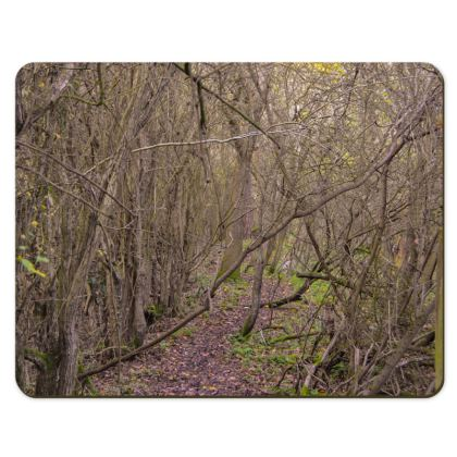 Placemats - Trail in the woods
