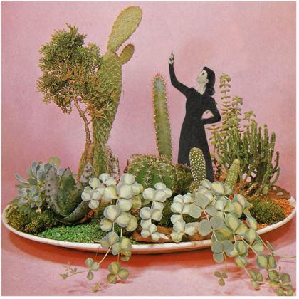 Velvet Cushion The Wonders of Cactus Island