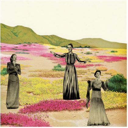 Velvet Cushion Human Cacti