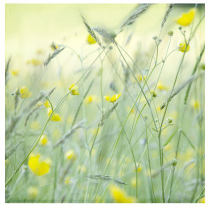 Fabric Placemats in Buttercup Meadow Flower Design