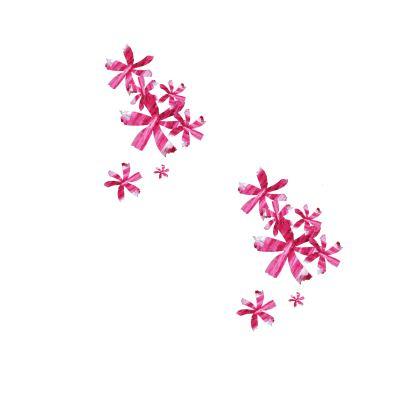 BOMBER | Ladies Soft Bloom |