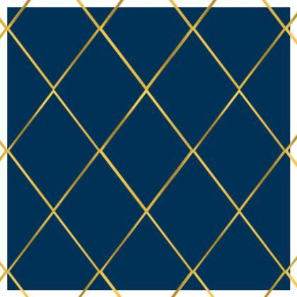 Luxury Cushions, Diamond Extravaganza