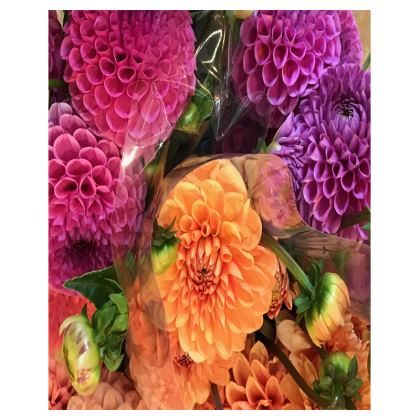 Trays - Dahlias Wrapped in Cellophane