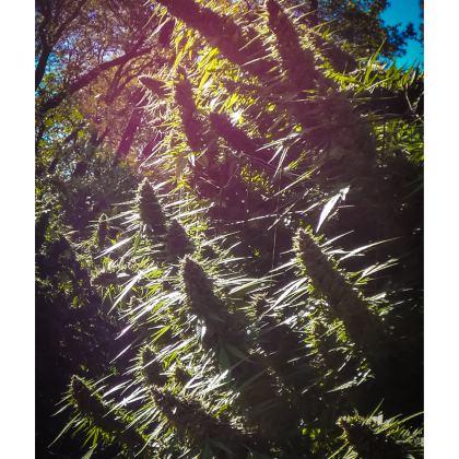 Cannaflauge Skater Dress