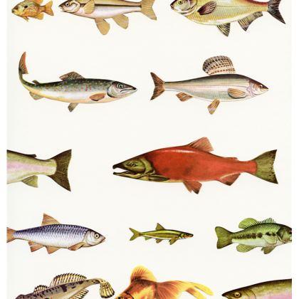 Velvet Cushion Fishing Line