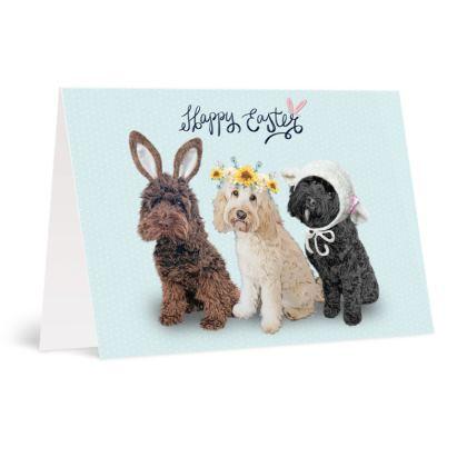 Cockapoo Easter card