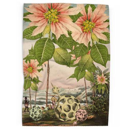 Poinsettia Trees Tea Towel