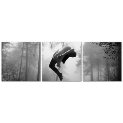 Levitation Triptych Canvas