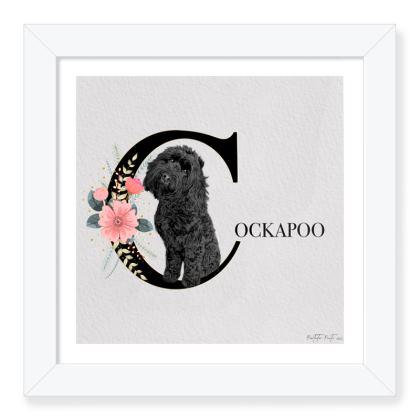 BLACK COCKAPOO FRAMED PRINT
