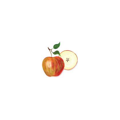 Harvest Apples Bone China Mug by Lucinda Kidney
